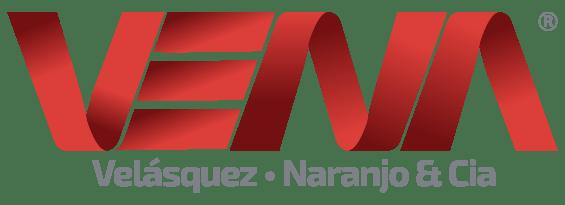 VENA - Desarrollo y consultoría empresarial